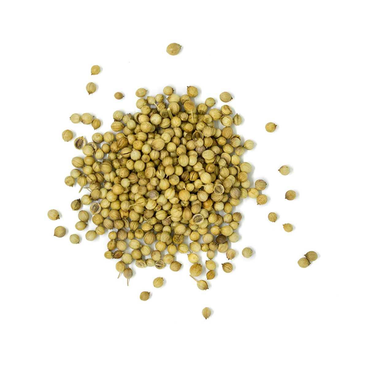 Real • Whole Coriander Seed-934